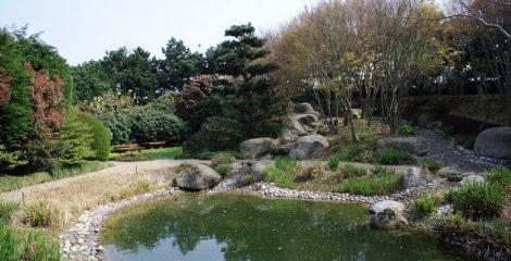 jardin-japonais-le-havre-bruno